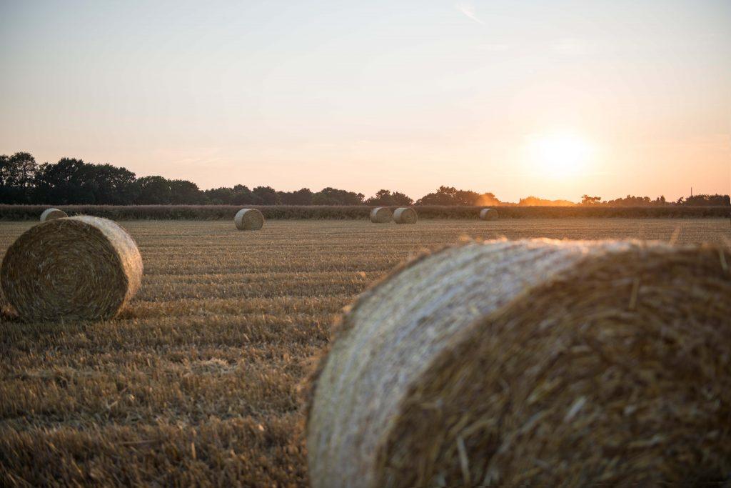 Romantischer Sonnenuntergang auf dem Land