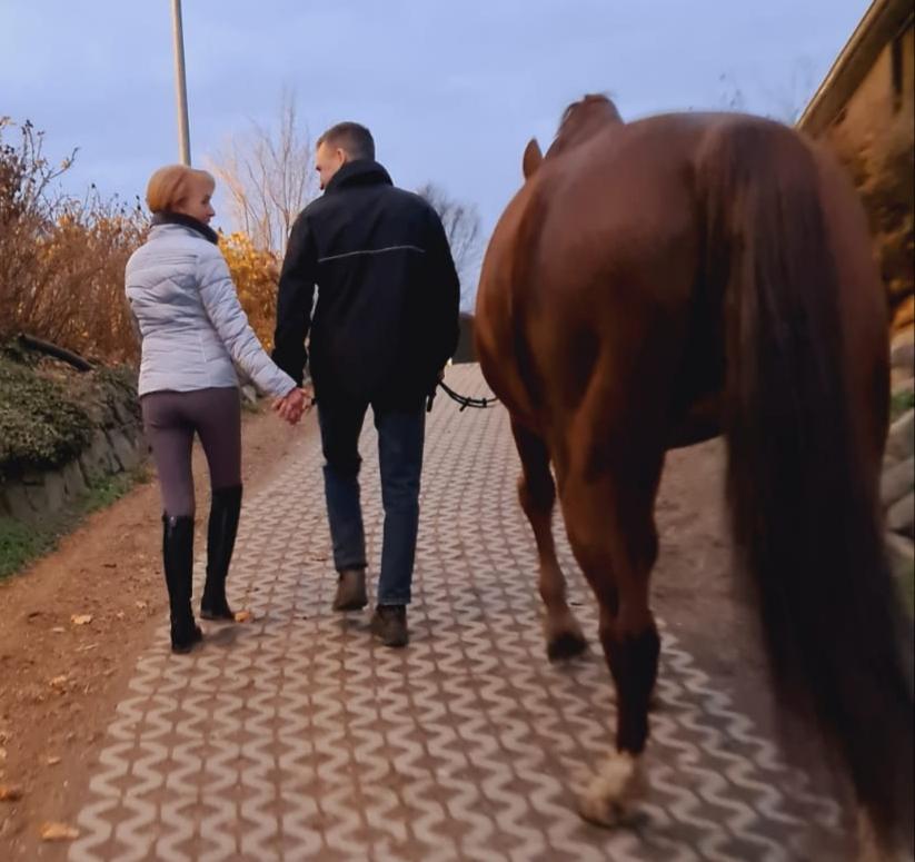Erfolgsgeschichte Landverliebt. Pferde verbinden