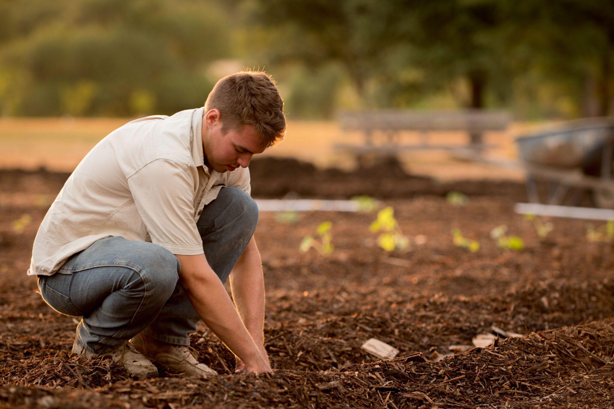 Landwirtschaftliche partnersuche