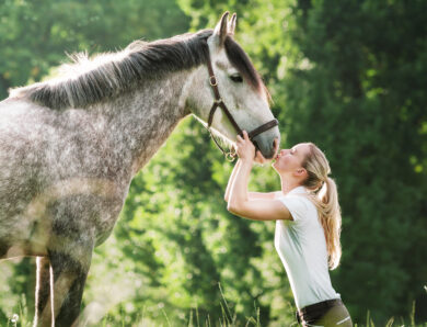 Reiter sucht Reiterin – pferdevernarrte Singles auf Partnersuche