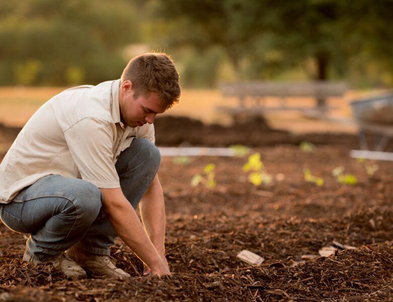 Singlebörse für Landwirt und Landwirtin